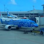 AIRPLANE PHOTO GALLERY!IN OKINAWA 石垣空港にて VOL.5